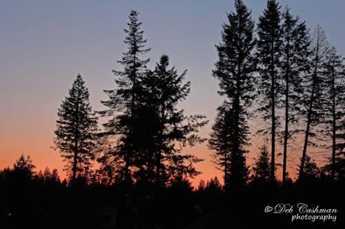 Sunset aug31 roundy